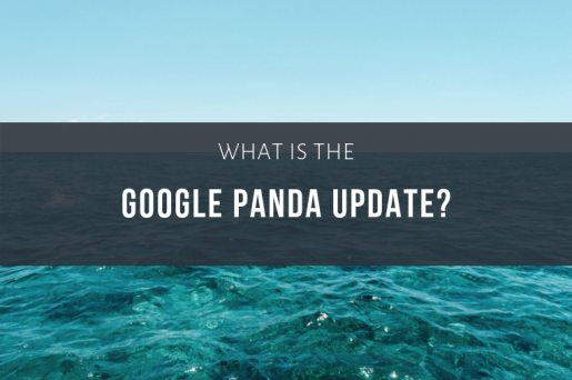What is the Google Panda Update?