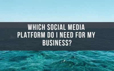 Which social media platform do I need for my business?
